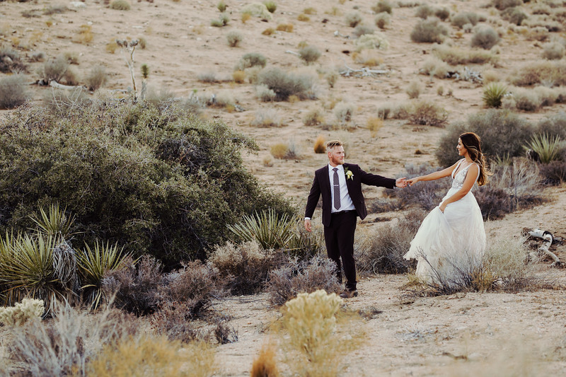 Elise&Michael_Wedding-Jenny_Rolapp_Photography-914.jpg
