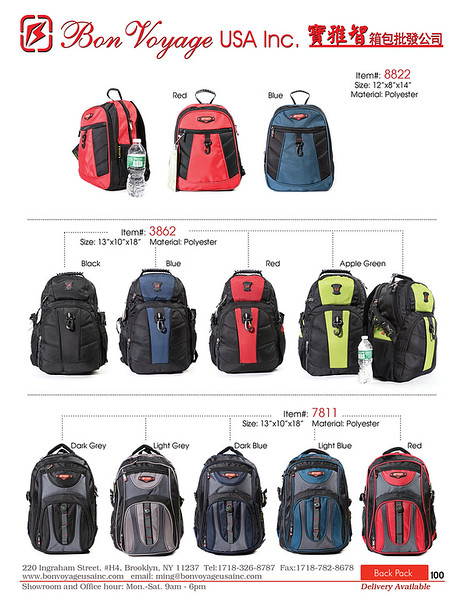 BackPack p100-X2.jpg