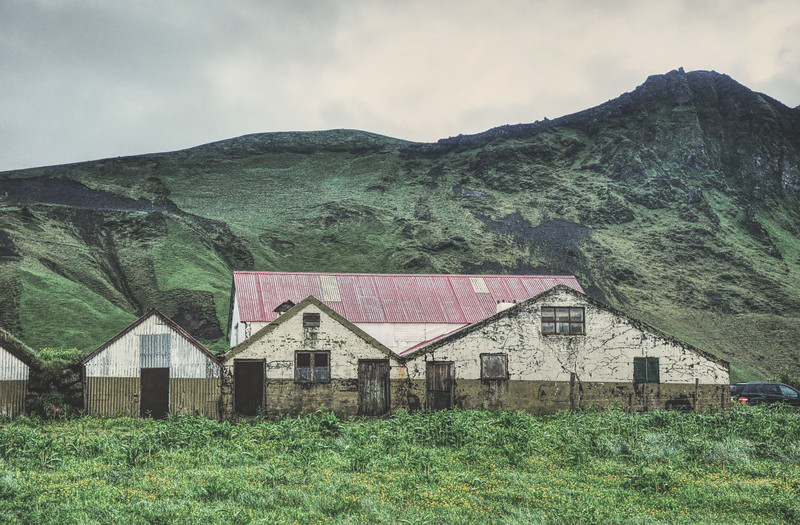 Iceland_Heather 4429.jpg