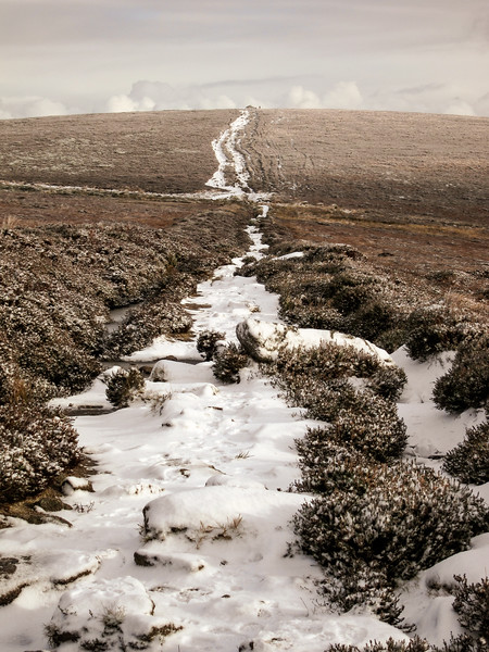 Path from Fairy Castle to Tibradden