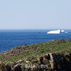 Iceberg floating past Puffin Island