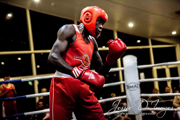 Boxing at the Lake photographed by Jessie D Images