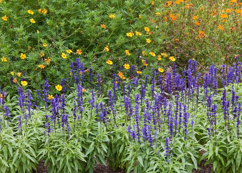 2009 08 12_Hyde Park, NY_0074_edited-1.jpg