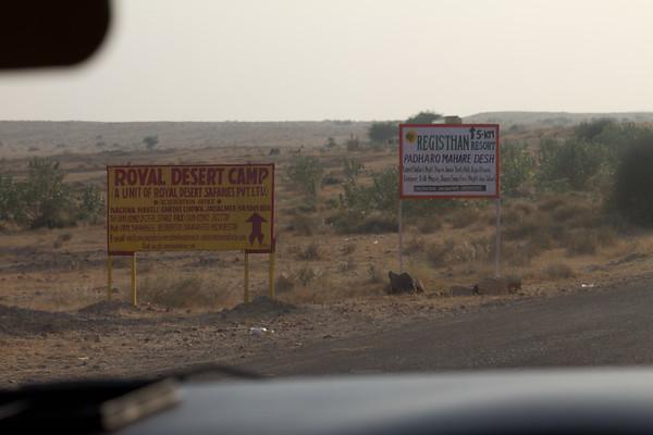 Thar Desert थार मरुस्थल