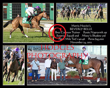 2012-2013 Thoroughbred Racing Season