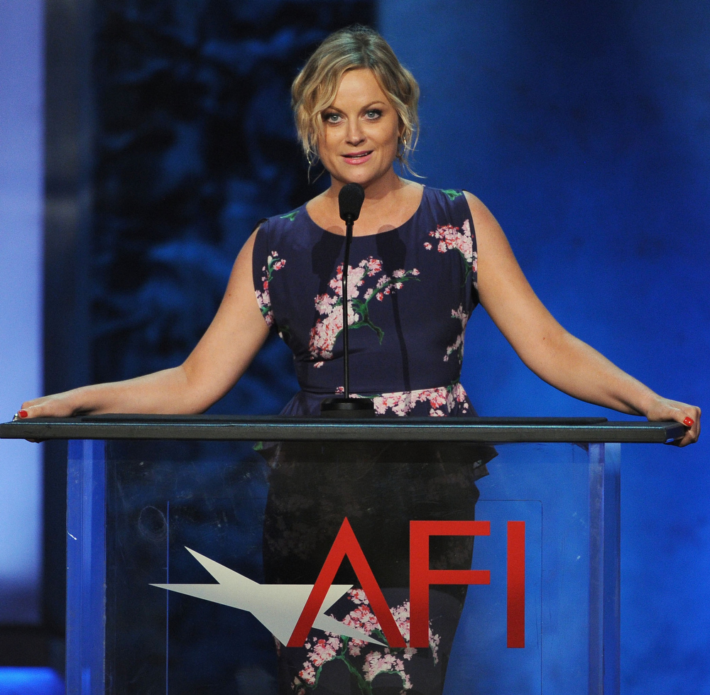 . Actress Amy Poehler speaks onstage during the 41st AFI Life Achievement Award Honoring Mel Brooks at Dolby Theatre on June 6, 2013 in Hollywood, California. Special Broadcast will air Saturday, June 15 at 9:00 P.M. ET/PT on TNT and Wednesday, July 24 on TCM as part of an All-Night Tribute to Brooks.  (Photo by Kevin Winter/Getty Images)