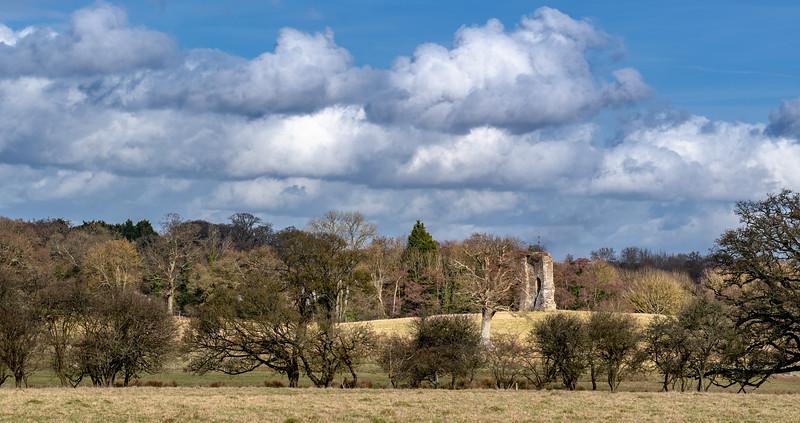 Knepp Castle Ruins-21.jpg