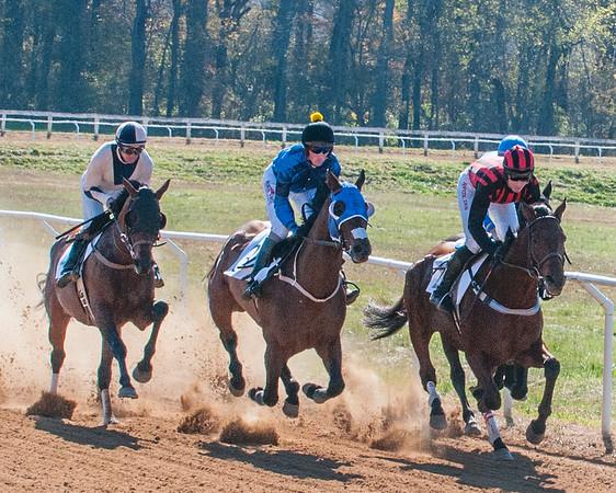Montpelier Hunt Races 2011 -- 2014 SELECT
