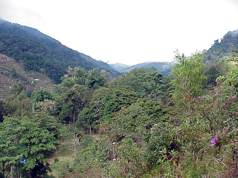 Savegre Mountain Lodge 3 Costa Rica 2-14-03 (50898260)