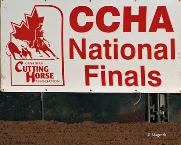 CCHA FINALS APR 2011 MISC.