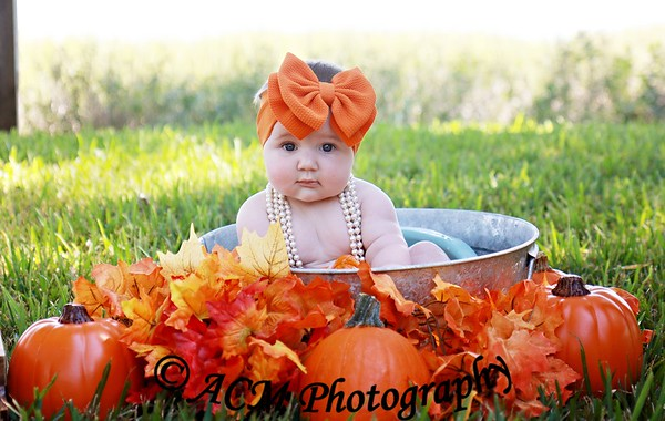 Clara's Pumpkin Patch