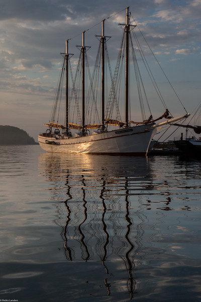 The Margaret Todd at Dawn