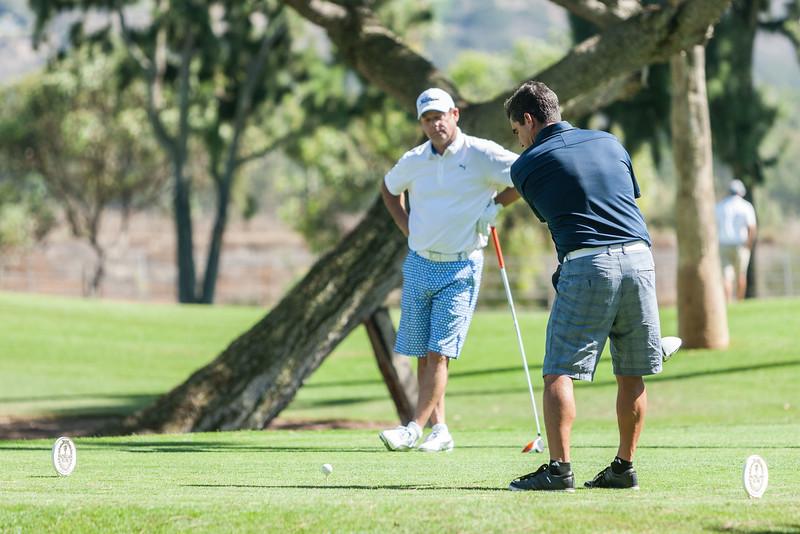 Golf301.jpg