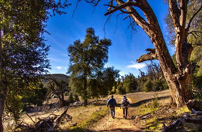 Hike - Cuyamaca's East/West Loop - Jan 25, 2019