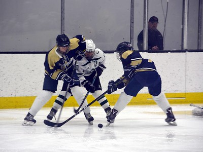 Girls Hockey-South Finals-Canton v AWHS-18-03-12