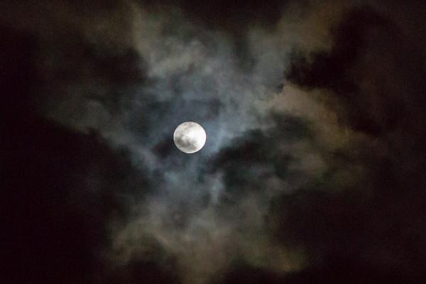 February 11 - Moonlight.jpg