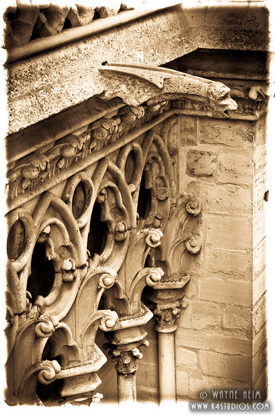 Notre Dame Gargoyle  3  Photography by Wayne Heim
