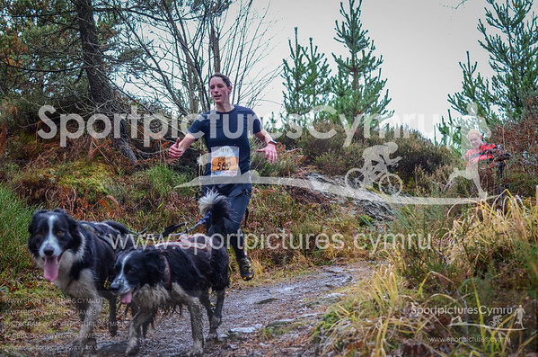 Betws y Coed Trail Challenge - Canicross