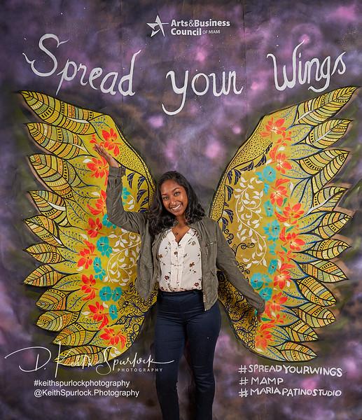 DS905010 MAMP2019-Wings.jpg