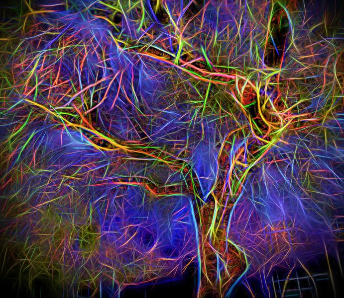 A Tree Grows in LV.jpg