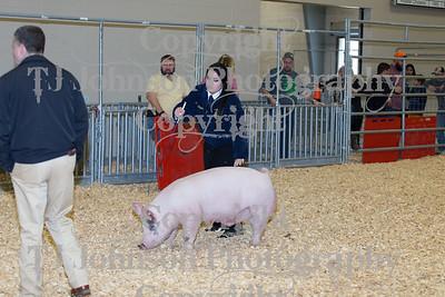 2018 KISD Swine Show Class 6