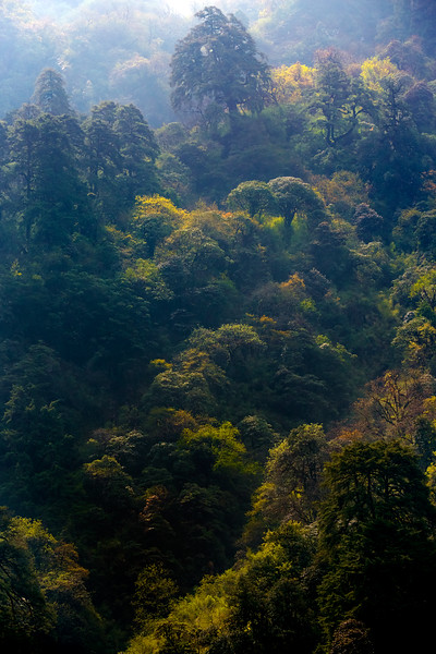 Nepal - ABC - 2E6B0503.jpg