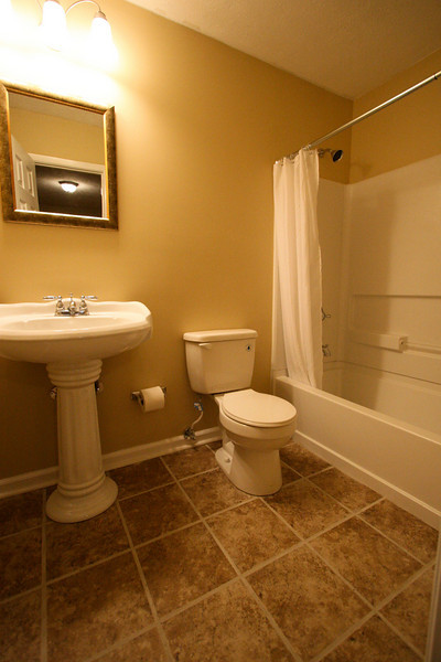 Master bathroom! Everything new. Beautiful pedestal sink!