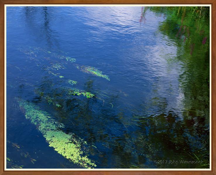 Reflections In Landham Brook