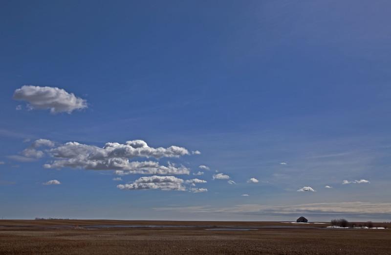 Banded Horizon