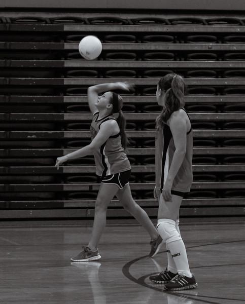 Volleyball-4030.jpg