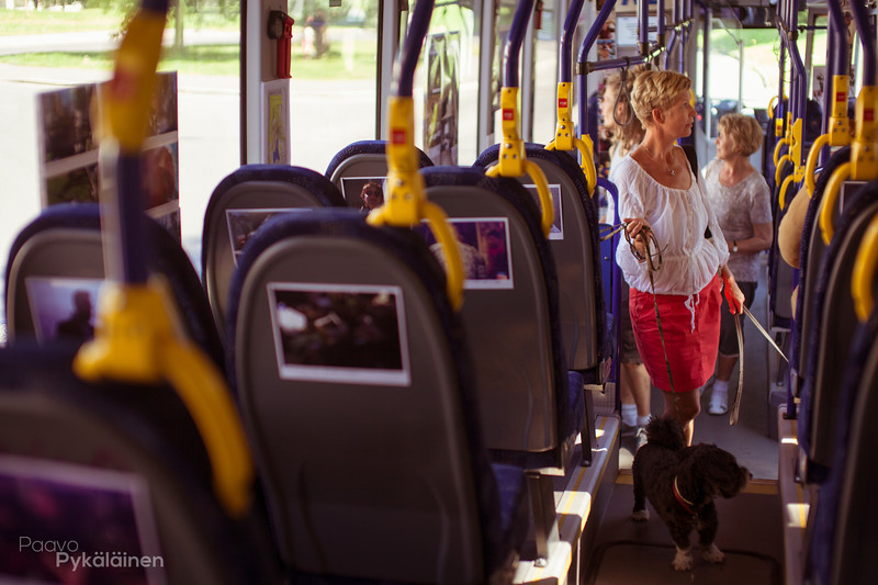 Kulttuuribussi-47.jpg