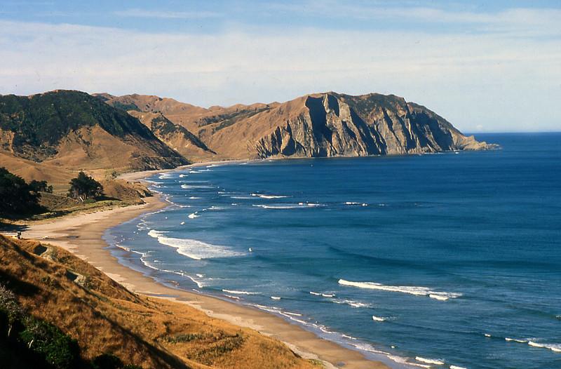 NZ_027.jpg
