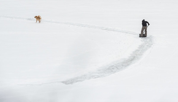 DAVID LIPNOWSKI / WINNIPEG FREE PRESS  A man shovels a skating trail on the Assiniboine River with his dog Sunday January 14, 2018.