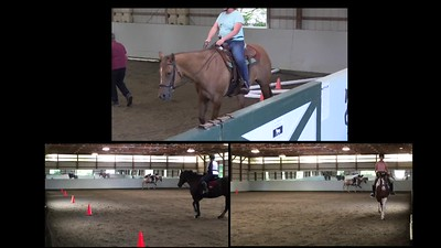 TSRC 2020-09-16 Wildfire Farm Day 3 Videos