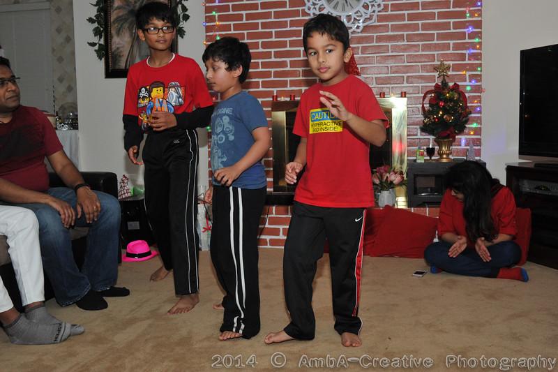 2014-12-28_Xmas@MadhusreeParthoHomeDobbsFerryNY_154.jpg