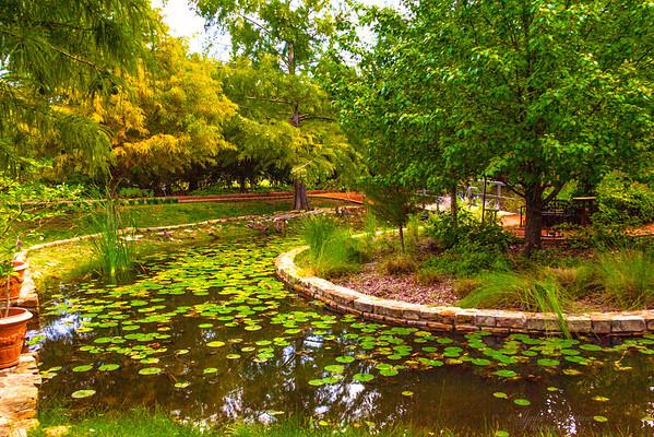 Fall at Clark Gardens 2012