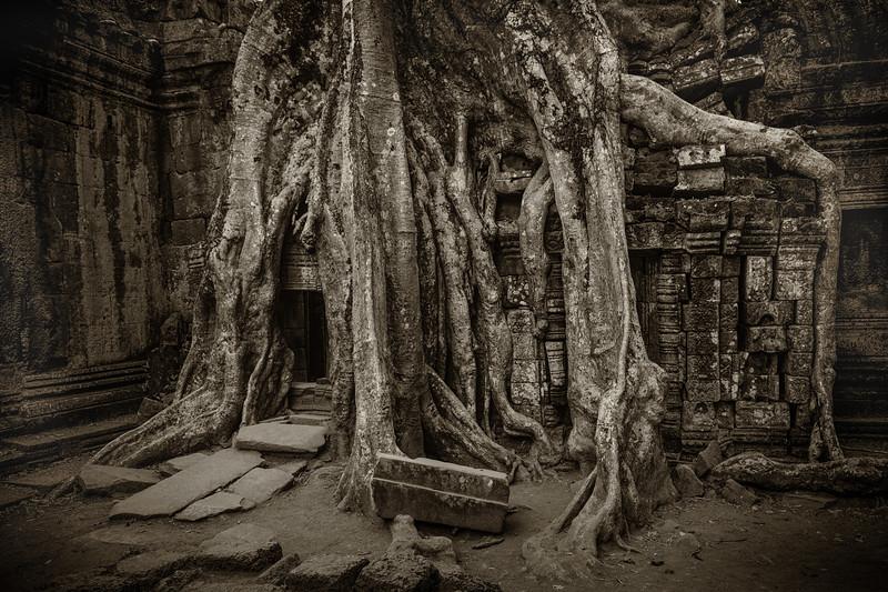 Cambodia-0942-Edit.jpg