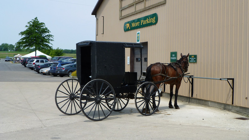 Amish Country, Millersburg, OH (May 26, 2012)