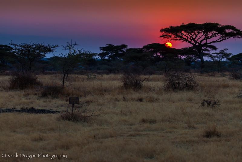South_Serengeti-5.jpg