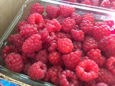 2016-07 Northwest Fruit!