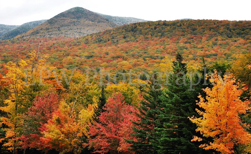 Autumn in New Hampshire IX