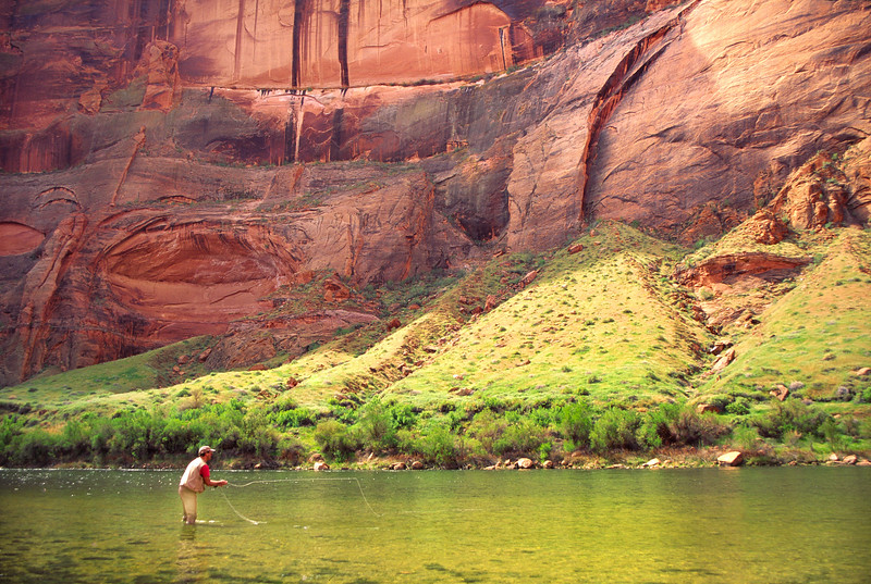 Wading the Colorado River at Lees Ferry.jpg