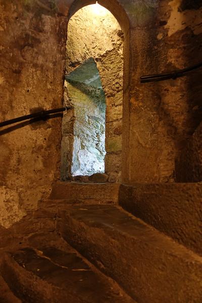 Blarney Castle_Blarney_Ireland_GJP01728.jpg