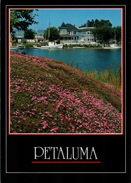 Petaluma 1993-1998
