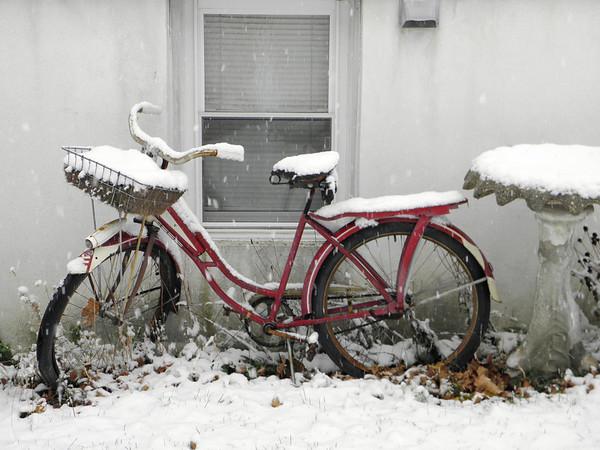 snow pics 11-25-10