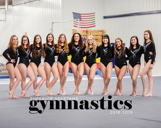 SHS_Gymnastics_2019