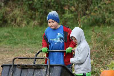 pumpkin picking 2010