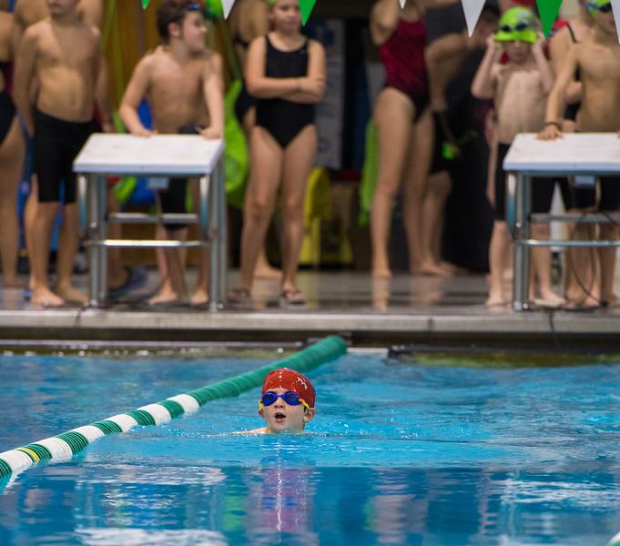 Swim Meet-1584.jpg