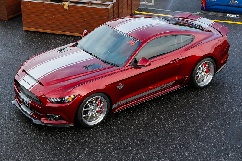SHELBY SUPERSNAKE CSM:17SS0720