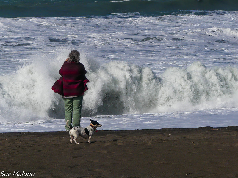 02-16-2021 Exploring the Lost Coast-34.jpg